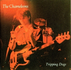 The Chameleons - Tripping Dogs