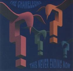 The Chameleons - This Never Ending Now