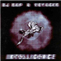 DJ Rap - Intelligence