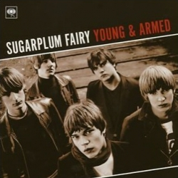 Sugarplum Fairy - Young & Armed