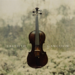 Saltillo - Ganglion