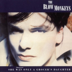 The Blow Monkeys - She Was Only A Grocer's Daughter