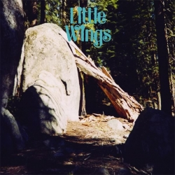 Little Wings - Discover Worlds of Wonder