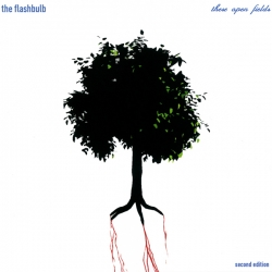 The Flashbulb - These Open Fields (2nd Edition)