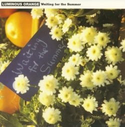 Luminous Orange - Waiting For The Summer
