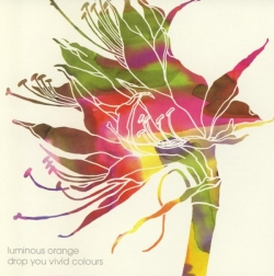 Luminous Orange - Drop You Vivid Colours