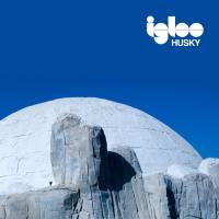 Husky - Igloo