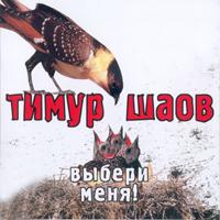 Шаов Тимур - Выбери меня