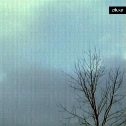 Pluke - Stormglass