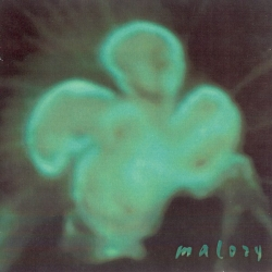 Malory - Not Here - Not Now
