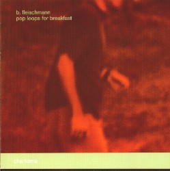 b. fleischmann - Pop Loops For Breakfast
