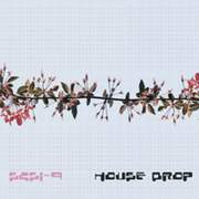 SCSI-9 - House Drop