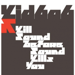 Kid606 - Kill Sound Before Sound Kills You