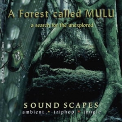 A Forest Called Mulu - A Search For The Unexplored