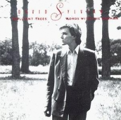 David Sylvian - Brilliant Trees / Words With The Shaman