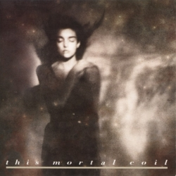 This Mortal Coil - It'll End In Tears