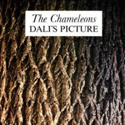 The Chameleons - Dali's Picture