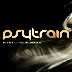 Psytrain - Mystic Ingredients