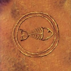 Fishbone - Fishbone 101--Nuttasaurusmeg Fossil Fuelin' The Fonkay
