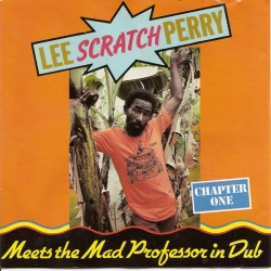 Mad Professor - Lee Perry Meets The Mad Professor In Dub Chapter One