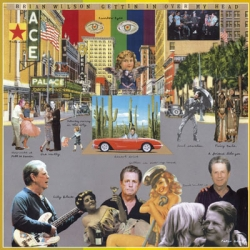 Brian Wilson - Gettin' In Over My Head