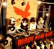 Birdy Nam Nam - Birdy Nam Nam