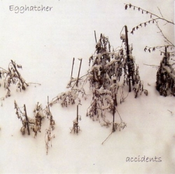 Egghatcher - Accidents