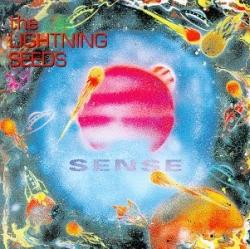 Lightning Seeds - Sense