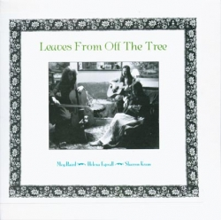 Meg Baird - Leaves From Off The Tree