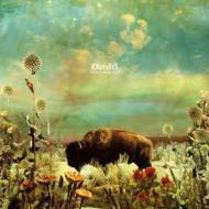 Omid - Afterwords 3