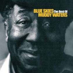 Muddy Waters - Blue Skies - The Best Of Muddy Waters