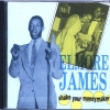 Elmore James - Shake Your Moneymaker (1986)