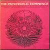Ralph Metzner - The Psychedelic Experience (1966)