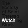 The Ecstasy of Saint Theresa - Watching Black (2006)