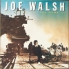Joe Walsh - You Bought It - You Name It (1983)