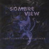 Sombre View - I Want To See The World Go Under (2001)