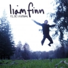 Liam Finn - I'll Be Lightning (2007)