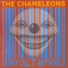 The Chameleons - Why Call It Anything (2001)