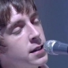The Last Shadow Puppets  - The last shadow puppets - Concert Privé Canal+