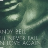 andy bell - I'll Never Fall In Love Again (2006)