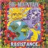 Big Mountain - Resistance (1995)