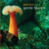 jasmon - gentle flowers (2004)