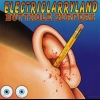 Butthole Surfers - Electriclarryland (1996)