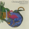 Christopher Cross - Rendezvous (1992)