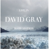 David Gray - Life In Slow Motion (2005)