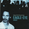 Eagle-Eye Cherry - Living In The Present Future (2000)