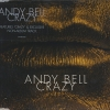 andy bell - Crazy