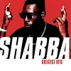 Shabba Ranks - The Best of Shabba Ranks (2001)
