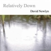 David Newlyn - Relatively Down (2007)