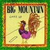Big Mountain - Wake Up (1992)